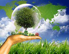Fitosanitarios ecológicos